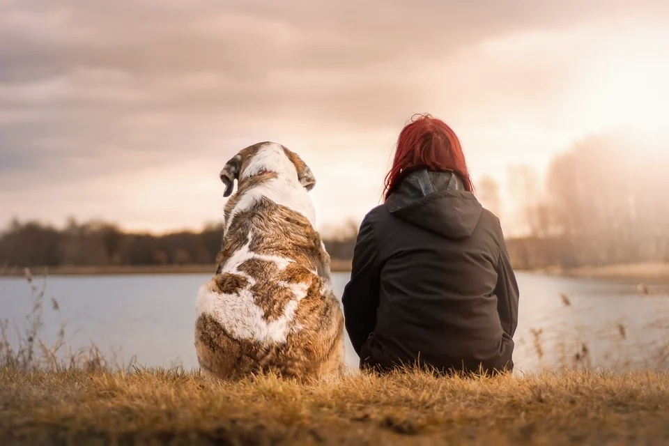 Benefits of Adopting a Pet for Addiction Recovery